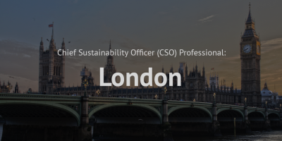 Chief Sustainability officer (CSO) Professional training course London