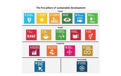 Sustainable Development Goals (SDGs) and the new business paradigm for growth