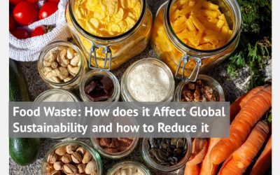 Food Waste: How does it Affect Global Sustainability and how to Reduce it