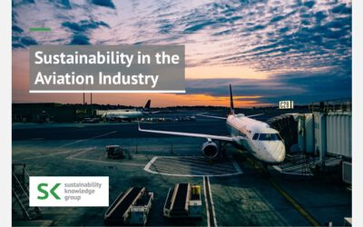 Sustainability in the Aviation Industry