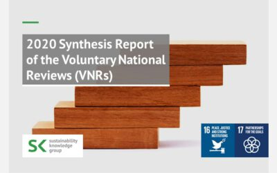 2020 Synthesis Report of the Voluntary National Reviews (VNRs)