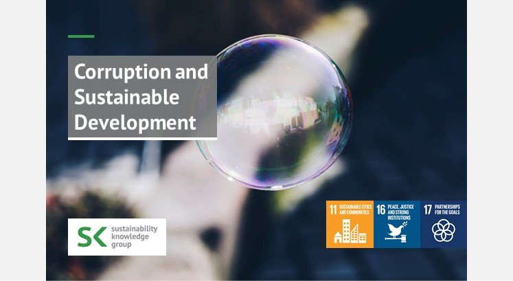 Transparency and Corruption and Their Relationship to Sustainable Development