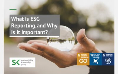 What Is ESG Reporting, and Why Is It Important?